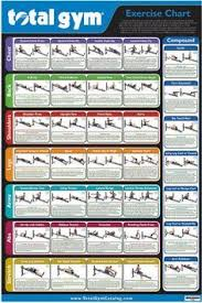 Total Gym Wall Chart Download Exercise Chart For Total Gym Weider Ultimate Body Works