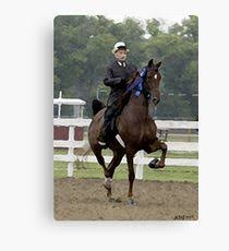 american saddlebred horse portrait canvas print