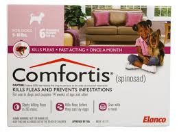 comfortis for dogs. Plain Comfortis Intended Comfortis For Dogs