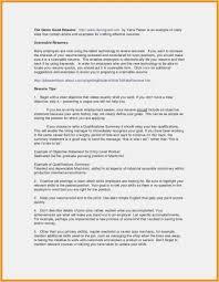 Web Developer Summary Resume Resume Template