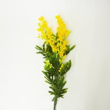「造花のミモザ無料画像」の画像検索結果