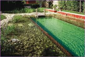 natural looking in ground pools. Natural Swimming Pools Diy Looking In Ground