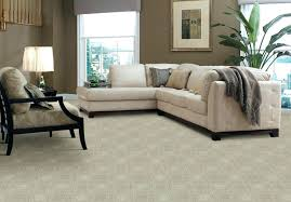 Bold Nice Carpets For Living Rooms Living Room Best Living Room