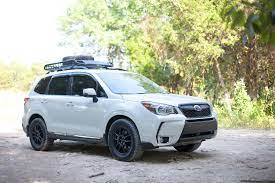 Pin On Forester Life