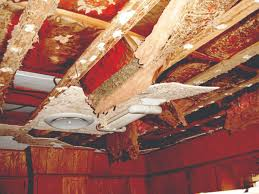 termite ceiling damage termites in ceilings