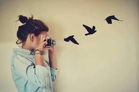 """Résultat de recherche d'images pour """"tumblr freedom photography"""""""