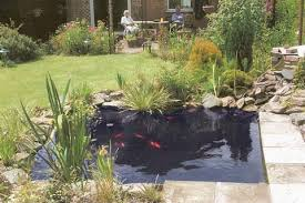 Small Picture Water Wizard Garden Ponds Water Features Landscaping