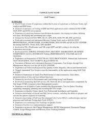 Sap Tester Sample Resume Oracle Database Scripting Language