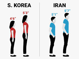 Human Height Changes Over The Last 100 Years In Different
