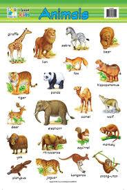 Domestic Animals Chart Amazing Wallpapers