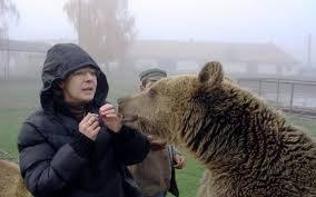 """INTERVIU Cristina Lapis, fondatoarea Sanctuarului de urşi de la Zărneşti: """"Am ajuns să facem turism de vânătoare în România. Suntem de râsul Europei"""""""