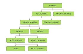 Real Number System Chart Math Formulas In Bengali Csdmultimediaservice Com