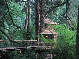 Behind The Build Biggest Treehouse Ever  Treehouse Masters Largest Treehouse In America