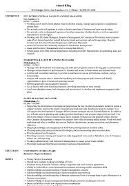 Planning Manager Resume Sample Sales Planning Manager Resume Samples Velvet Jobs 2