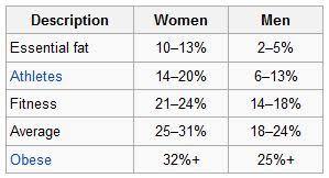 Run Muffin Body Fat