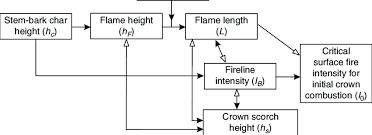 Fireline Diameter Chart The Inter Relationships Involved Among Commonly Used