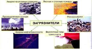 Экологические проблемы Источники загрязнения окружающей среды  Рис 178 Источники загрязнения окружающей среды