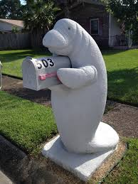 mailbox. Someone Dresses Up This Manatee Mailbox Throughout The Year And We\u0027re Obsessed C