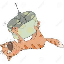 Cat On A Chandelier