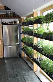 growing plants indoors can make your