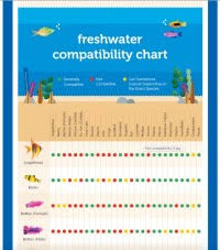 Freshwater Fish Compatibility Chart Pdf Freshwater