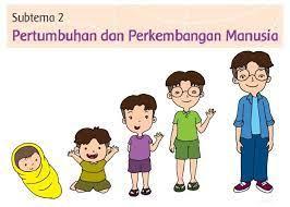 Try the suggestions below or type a new query above. Kumpulan Kunci Jawaban Tema 1 Kelas 3 Subtema 2 Pertumbuhan Dan Perkembangan Manusia Halaman 52 96 Semangat News