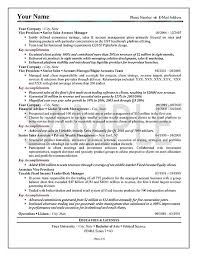 Executive Sales Resume Example