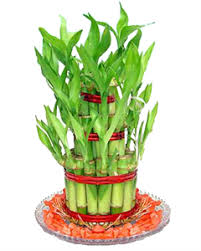 feng shui items for office. Feng Shui Tips For Office. Symbols And Remedies Office Items
