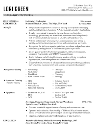 catchy resume objectives template catchy resume objectives