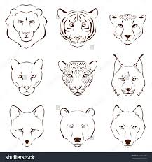 Set Of Simple Line Illustrations Showing Different Facial Features