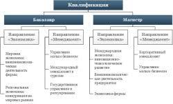 Полезная информация Функции государства понятие и виды курсовая  функции государства понятие и виды курсовая работа