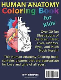 Just pick a coloring sheet, pay, and download! Human Anatomy Coloring Book For Kids Over 30 Human Body Coloring Sheets Great Gift For Boys