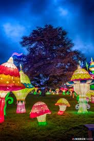 longleat festival of light 2016 colourful mushroom garden
