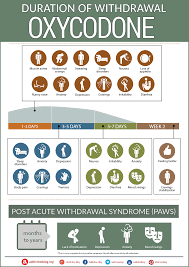 Oxy Chart The Oxycodone Withdrawal Timeline Chart