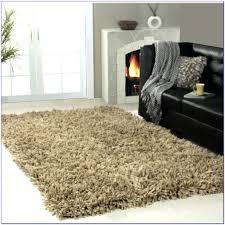modern outdoor rug rugs for patios zen green