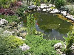 with the stone in the water and plantings a pond looks better