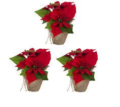Bambelaa 3 Stückweihnachtsstern Künstlich Fenster Naturgetreu Weihnachten Dekoration Weihnachtsdeko Rot