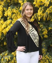 Image result for Cootamundra miss wattle 2017