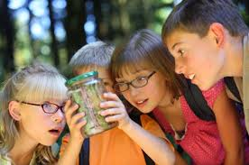 Image result for kids learning