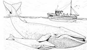 Small Picture Fishing Boat Over Two Blue Whale Coloring Page Coloring pages