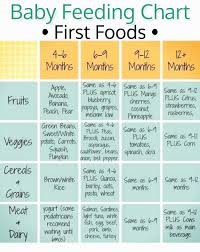 Baby Food Chart 3 Months Stage 1 Baby Food At 3 Months Wonderfully Gerber Age Chart