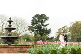 pink tulips in bloom for spring wedding portraits at memphis botanic gardens memphis wedding photos