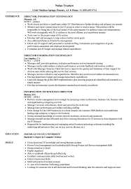 Information Technology Resume Sample Information Technology Director Resume Samples Velvet Jobs 33