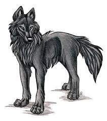 Image result for ninja wolf