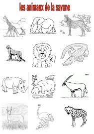 Vocabulaire 2 Ce Cm2 Imagiers Les Animaux De La Savane Coloriage A Imprimer Imagier Des Animaux De La Banquise L