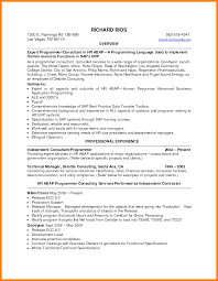 Resume Professional Summary Examples 100 summary of qualifications for resumes Ledger Review 71