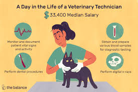 Veterinarian Technician Salary Veterinary Technician Job Description Salary Skills More