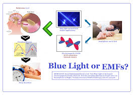Circadian Rhythm And Blue Light Pdf Is It Blue Light Or Increased Electromagnetic Fields