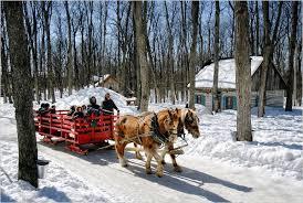Risultati immagini per Pierre fauchè cabane in winter