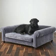 funny cartoon airplane dog cat pet bed house kennel fleece luxury